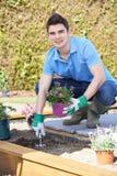 Landschapstuinman Planting Flower Bed in Tuin royalty-vrije stock afbeeldingen