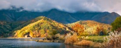 Landschapsweergeven van Koumi-Park in de herfst op de kust van Meerka royalty-vrije stock afbeelding