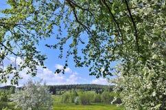 Landsckape del pueblo de la primavera Fotos de archivo