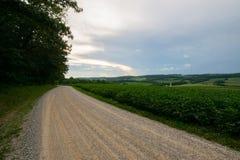 Landscpae аграрного края с вырезыванием дороги до конца в Sout Стоковые Фото