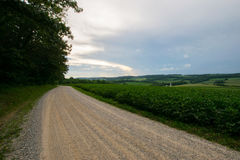 Landscpae des Ackerlandes mit Abtragung durch in Sout stockfotos