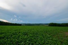 Landscpae des Ackerlandes in Süd-Pennsylvania lizenzfreies stockfoto