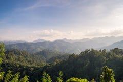 Landscpae des tropischen Regenwaldes Stockbilder