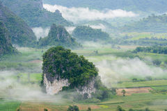Landscpae view of Pu langka & x28;lang ka mountain& x29; with mist in morn Royalty Free Stock Photos
