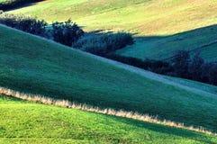 landsfält Arkivbilder