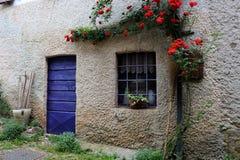 Landsfönster och dörrwhit som utanför klättrar röda rosor Arkivbild