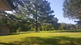 Landsgård Arkivfoto