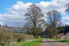 Landsgränd Royaltyfri Foto