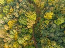 Landsgränd på flyg- sikt för höstskog fotografering för bildbyråer
