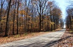 Landsgrusväg i nedgång Arkivfoto