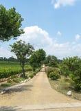 Landshus nära Montpellier Royaltyfri Fotografi
