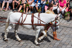 Landshut Wedding. Horse at Landshut Wedding. The Landshut Wedding German: Landshuter Hochzeit is one of the largest historical pageants in Europe Stock Photography