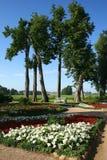 Landsitz (Trigorskoe) Stockbilder