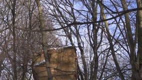Landsitzzustandsruinen bedeckten Winterschnee stock footage