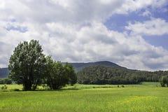 Landskap Arkivbild