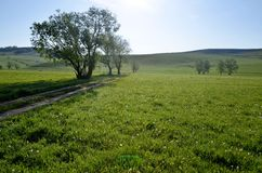 Landskap fotografering för bildbyråer