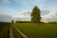 Landskap Arkivfoton