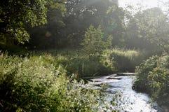 Landskap Royaltyfria Foton