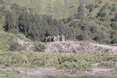 Landskap av ökenberget Royaltyfria Foton