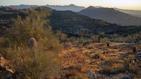 Landskap av öknen och berg nära Phoenix Arizona royaltyfri fotografi
