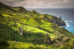 Landskap av ön av Flores Azores Portugal Royaltyfria Bilder
