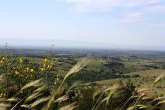 Landskap av Apulia Royaltyfri Bild