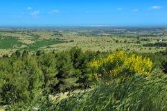 Landskap av Apulia, Italien Arkivbild