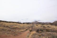 Landskap av Arizona USA Arkivbild