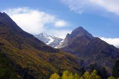 Landskap av berg av den guld- hösten Arkivfoton