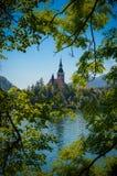 Landskap av Bled kyrkan i Slovenien Fotografering för Bildbyråer