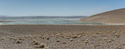 Landskap av Bolivia Arkivfoto