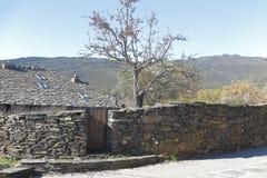 Landskap av Campillo de Ranas Royaltyfri Fotografi