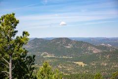 Landskap av Custer State Park arkivbild