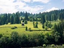 Landskap av dalen för Argel ` s i Bucovina, Rumänien fotografering för bildbyråer