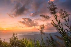 Landskap av dalen och berget av Chiang Mai arkivbilder