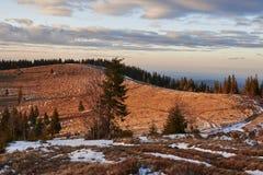 Landskap av de Carpathian bergen i den tidiga våren med restna av snö med vägen Royaltyfri Foto