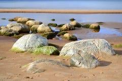 Landskap av den baltiska sjösidan Arkivfoto