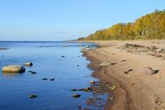 Landskap av den baltiska sjösidan Arkivfoton