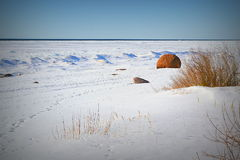 Landskap av den baltiska sjösidan i en vinterdag Arkivbild