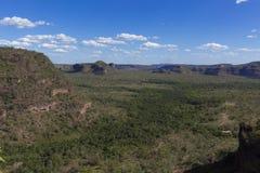 Landskap av den brasilianska cerradoen arkivfoto