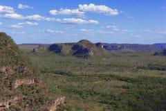 Landskap av den brasilianska cerradoen arkivbilder