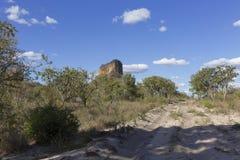 Landskap av den brasilianska cerradoen royaltyfri fotografi