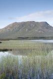 Landskap av den Connemara nationalparken; Galway Royaltyfri Fotografi