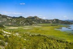 Landskap av den Crnojevica floden i Montenegro arkivbilder