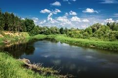 Landskap av den flödande floden royaltyfria foton