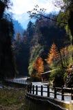 Landskap av den Guanegou medborgaren Forest Park i Kina ` s Gansu Fotografering för Bildbyråer