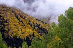 Landskap av den guld- hösten i bergen Royaltyfri Foto