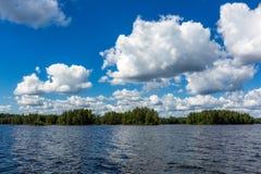 Landskap av den härliga sjön med skogen Royaltyfri Bild