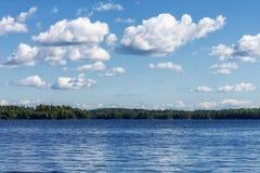 Landskap av den härliga sjön med skogen Arkivbilder