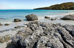 Landskap av den Karikari halvön Nya Zeeland royaltyfri bild